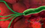 Лечение хеликобактерного гастрита