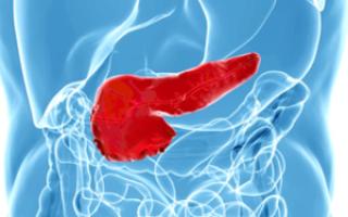 Иннервация поджелудочной железы