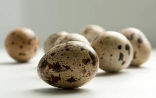 Лечение гастрита сырыми перепелиными яйцами