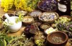 Лечение геморроя лекарственными растениями