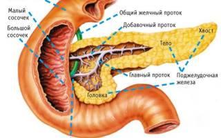 Слабая поджелудочная железа