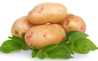 Можно ли картошку при поносе?