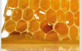 Лечение язвы двенадцатиперстной кишки медом и прополисом