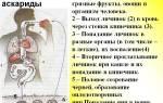 Личинка аскариды – миграция, развитие в организме человека