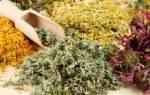 Какие лекарственные травы помогают от глистов?
