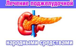 Настойка для поджелудочной железы