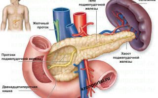 Сибирское здоровье при панкреатите
