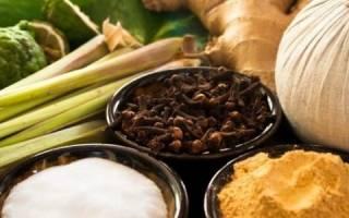 Лечение рака желудка травами
