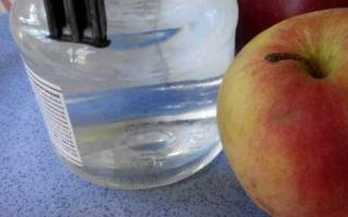 Яблочный уксус при панкреатите