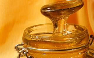 Помогает ли мед от глистов (гельминтов)?