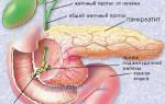 Лечение поджелудочной железы (панкреатита) по Болотову