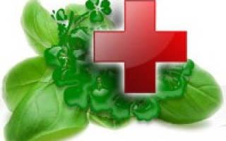 Лечение гастрита лечебными травами – фитотерапия