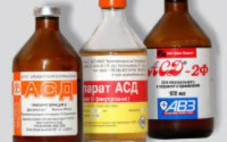 Применение фракции АСД-2 при лечении геморроя