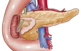 Неоднородная поджелудочная железа