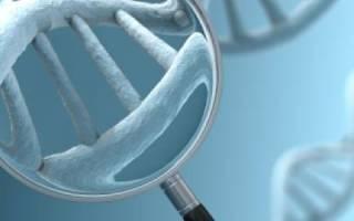 Рак желудка – наследственность, передается ли?