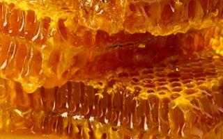 Можно ли мёд при поносе?