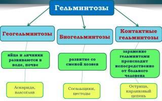 Смешанные гельминтозы (глистные инвазии, полиинвазии)
